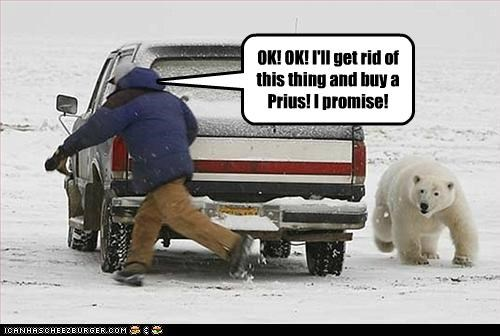animals cars chasing environment global warming I Can Has Cheezburger polar bears Prius running suvs - 5188428288