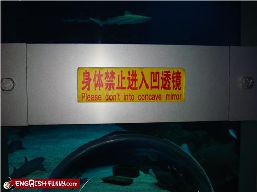 animals aquarium fish mirror sign vague warning - 5188915456