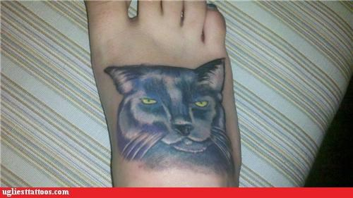 animals Cats foot tats