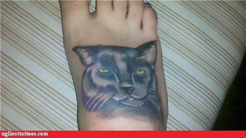 animals Cats foot tats - 5189105408