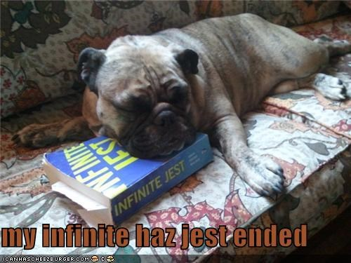 asleep best of the week book David Foster Wallace infinite jest literature mixed breed sleep sleeping whatbreed - 5189995776