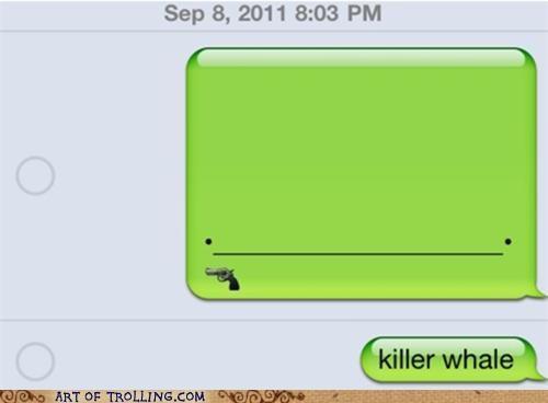 best of week dumb killer whale sms - 5190176512