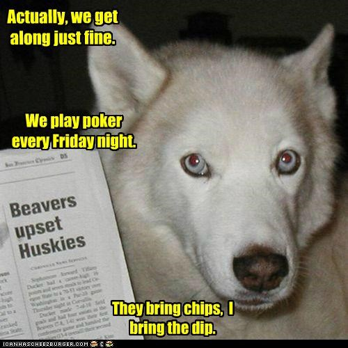 Actually, we get along just fine. We play poker every Friday night. They bring chips, I bring the dip.