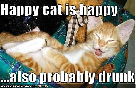 drunk happy lolcats orange - 519148288
