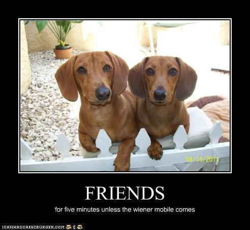 FRIENDS for five minutes unless the wiener mobile comes