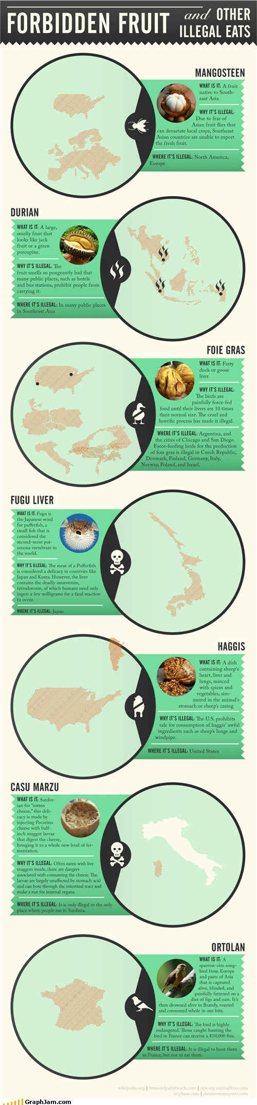 food fruit illegal infographic - 5193212672