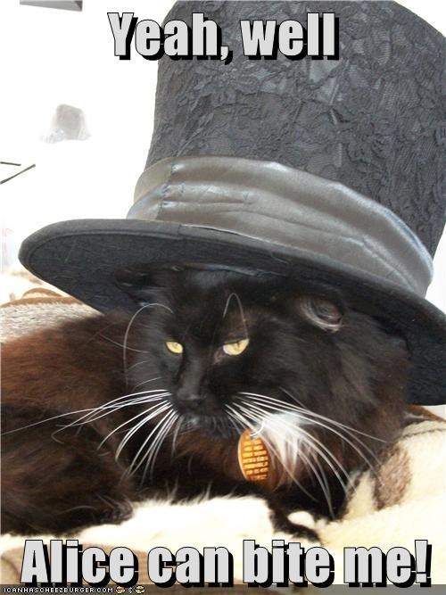 alice,alice in wonderland,bite,caption,captioned,cat,dont-care,hat,mad hatter,no1purr,threat