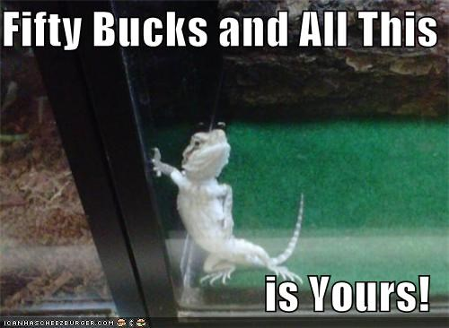 advertising all be bucks can caption captioned fifty lizard modeling posing price selling this yours - 5194912256