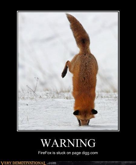 animals digg firefox hilarious wtf - 5195371008