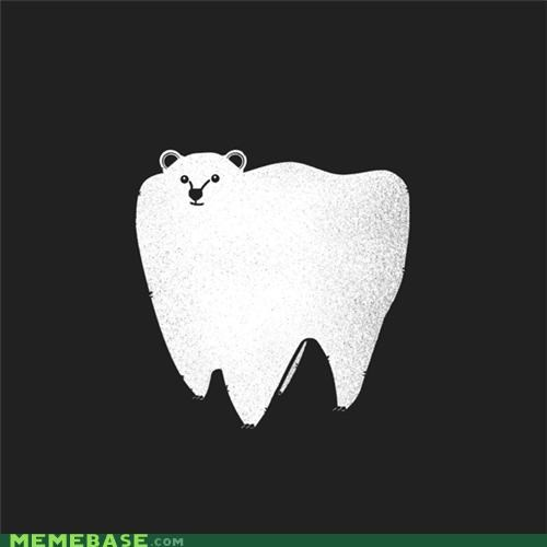bear,Hall of Fame,literalism,molar,polar,polar bear,similar sounding