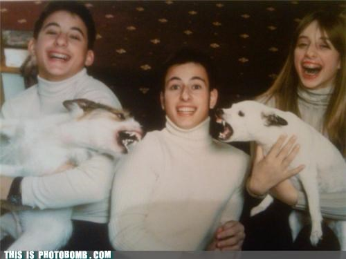 affection Animal Bomb animals best of week dogs family photo pets - 5195722496