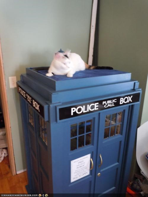 awesome beds best of the week doctor who Hall of Fame homes sci fi tardis toys win - 5195825408