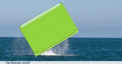 gallery,iphone whale,photos,text,whale,win