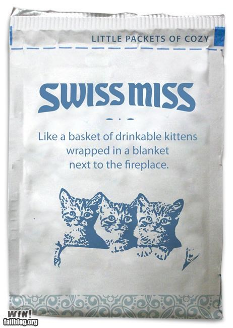 Cats,cute,hot chocolate,swiss miss,warm and fuzzy