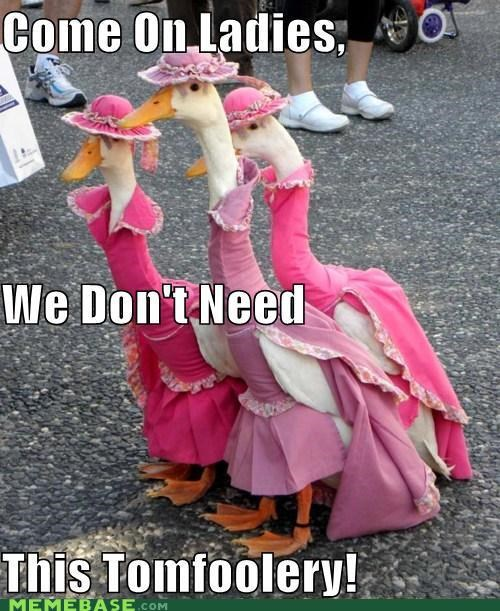 dress up,ducks,ladies,Memes,tomfoolery