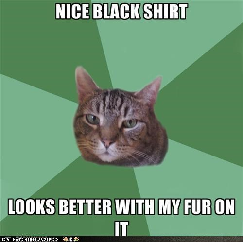 annoying clothing fur hair macro memecats rude shirts - 5196797696