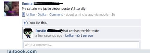 cat justin bieber poster witty reply