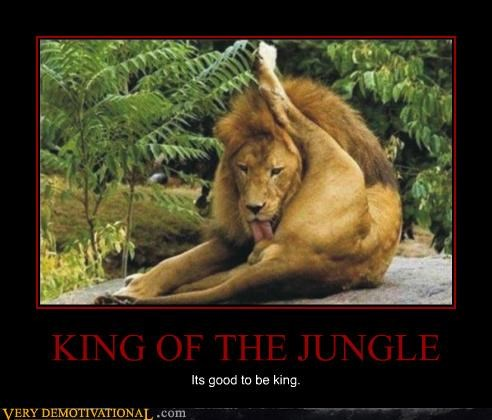 KING OF THE JUNGLE Its good to be king.