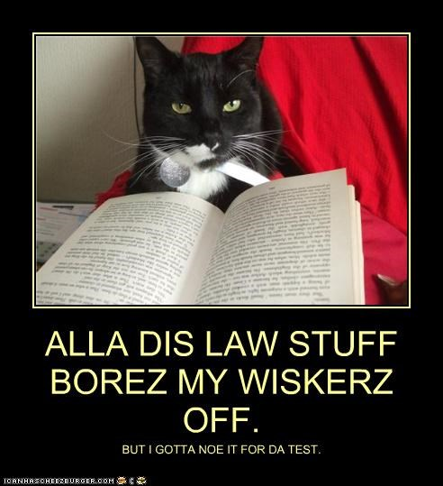 ALLA DIS LAW STUFF BOREZ MY WISKERZ OFF. BUT I GOTTA NOE IT FOR DA TEST.