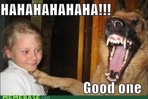 dogs girls good girl humor laughs Memes - 5199186176
