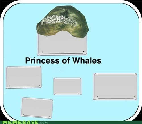 diana gallery Memes princess whales - 5199520000