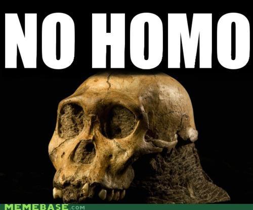 erectus homo Memes no sapien - 5199644672