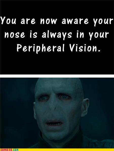 Harry Potter nose peripheral vision voldemort