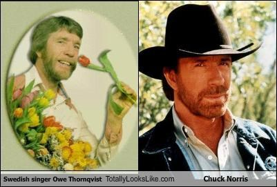 Swedish Singer Owe Thornqvist Totally Looks Like Chuck Norris