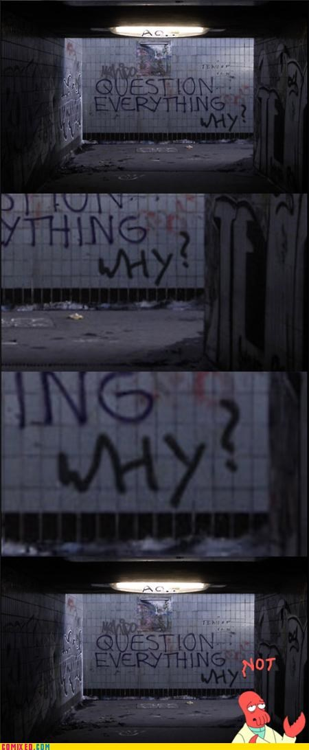 graffiti,meme,Question Everything,the internets,Why Not,Zoidberg