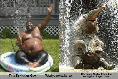 cruise,disneyland,elephant,fat guy,jungle,random person,sprinkler,water