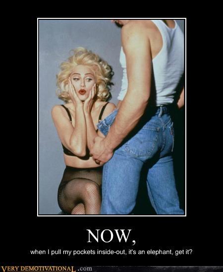 elephant hilarious joke Madonna - 5201260544