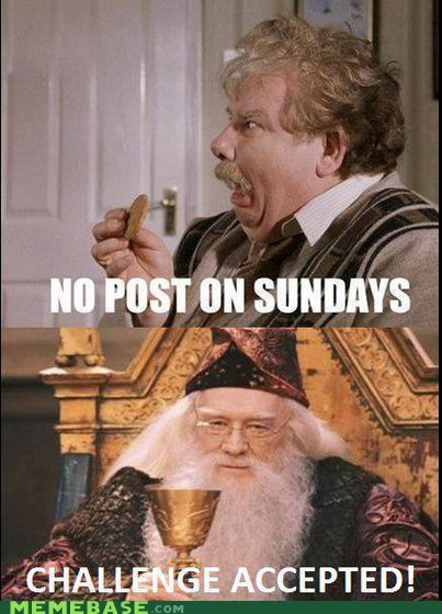 Challenge Accepted,dumbledore,Harry Potter,post,repost,sundays