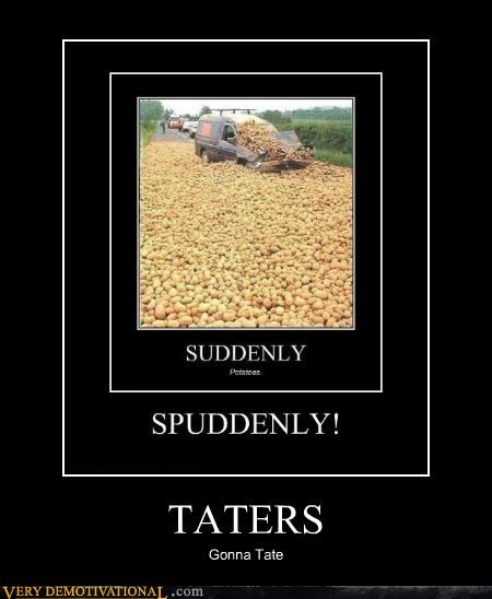 hilarious potatoes wtf - 5201554176