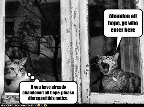 abandon,abandon all hope,all,caption,captioned,cat,Cats,caveat emptor,dante,hope,inferno,notice,quote,shouting,warning
