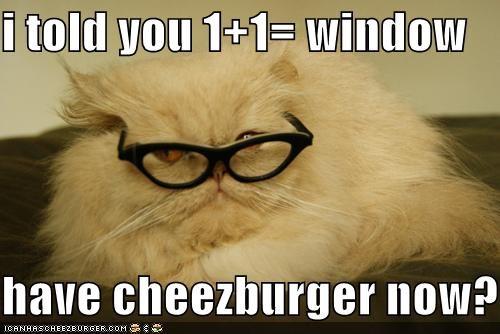 Cheezburger Image 5202249216