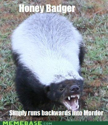 animals animemes backwards badger honey Memes mordor walk - 5202397952