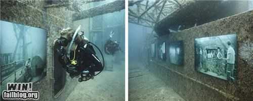 art,exhibit,gallery,ocean,scuba,shipwreck,underwater
