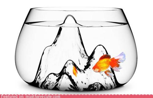 blown glass,fish,Fishbowl,glass,mountain