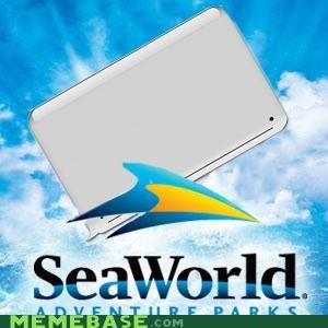 big adventure,iphone,Memes,seaworld,whale