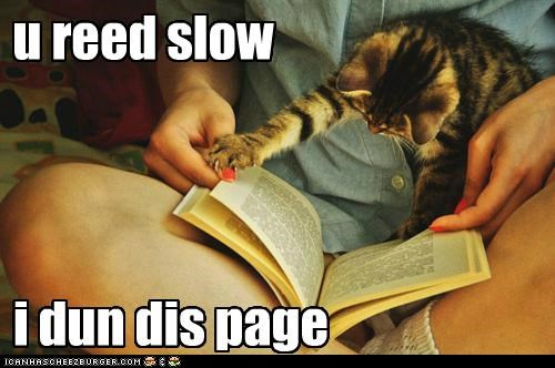 book,caption,captioned,cat,done,impatient,page,read,reading,slow,you