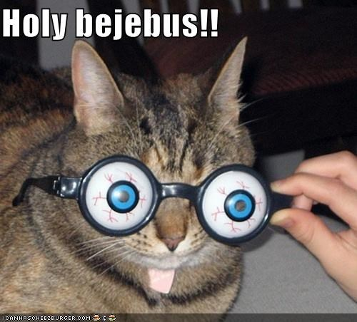 animals bulging eyes Cats exclamation glasses holy crap I Can Has Cheezburger novelty - 5204921856