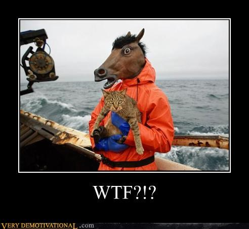cat,creepy,deadliest catch,hilarious,horse