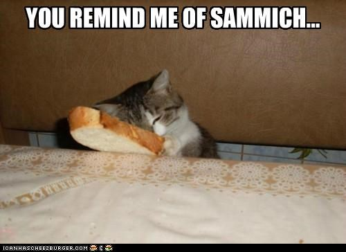 YOU REMIND ME OF SAMMICH...