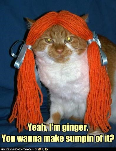 Yeah, I'm ginger. You wanna make sumpin of it?