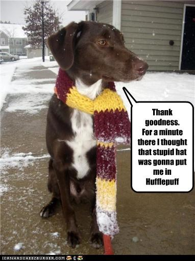 Thank goodness. For a minute there I thought that stupid hat was gonna put me in Hufflepuff