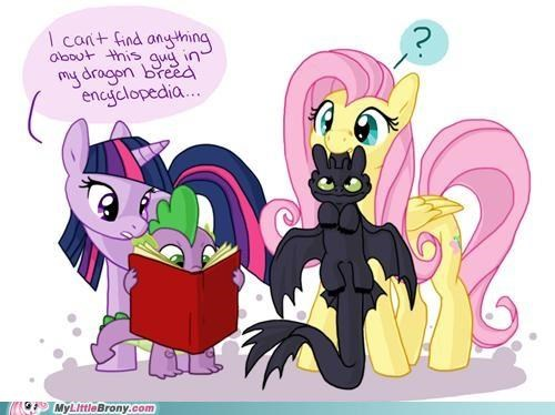 art book breed cant-find dragon fluttershy twilight sparkle - 5205646592