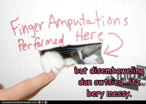 but disemboweling dun owtsied...itz bery messy.