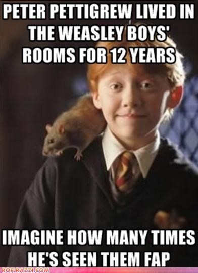 actor celeb funny Harry Potter rupert grint sci fi - 5206436096