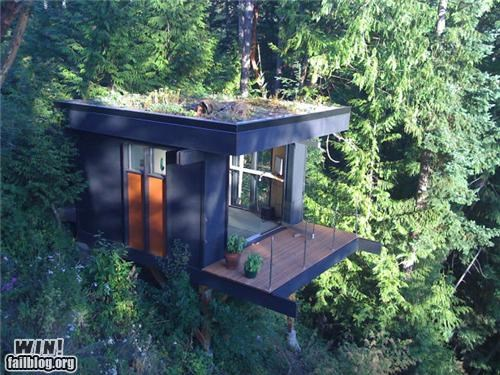 architecture building design home nature Office tree tree house - 5206754048