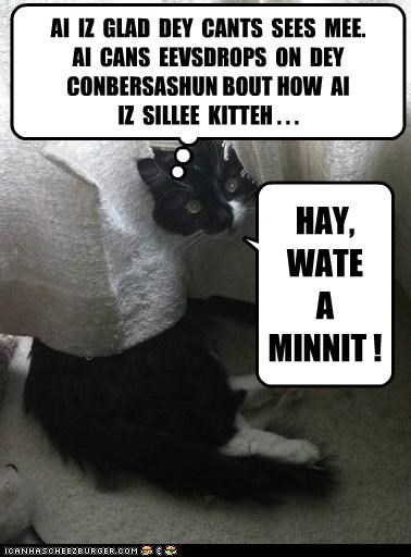 AI IZ GLAD DEY CANTS SEES MEE. AI CANS EEVSDROPS ON DEY CONBERSASHUN BOUT HOW AI IZ SILLEE KITTEH . . . HAY, WATE A MINNIT !